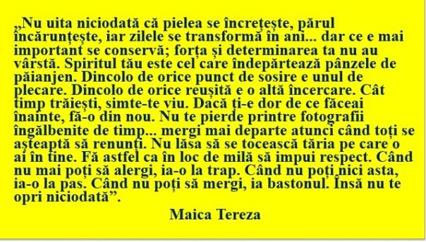 Maica Tereza 2